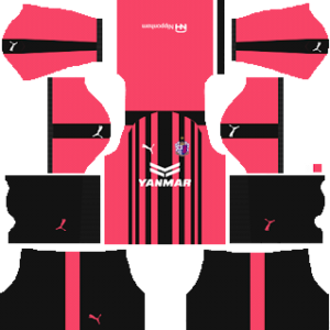 Cerezo Osaka AFC Champions League Kit 2019
