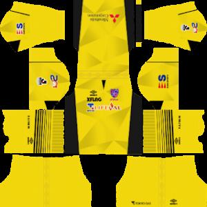 FC Tokyo Goalkeeper Home Kit 2019