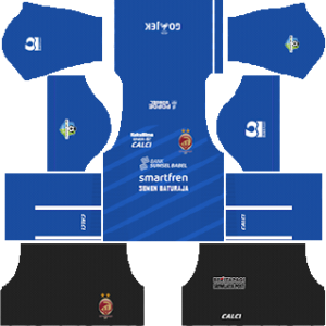 Sriwijaya FC Goalkeeper Home Kit 2019