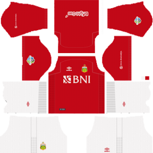Bhayangkara FC Third Kit 2019
