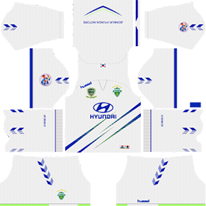 Jeonbuk Hyundai Motors FC ACL Away Kit