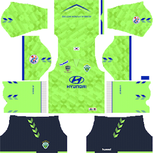 Jeonbuk Hyundai Motors FC ACL Home Kit