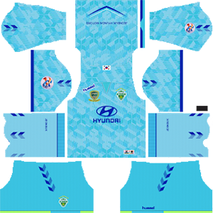 Jeonbuk Hyundai Motors FC ACL Goalkeeper Home Kit