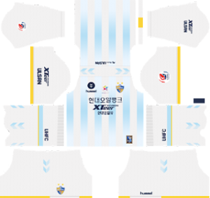Ulsan Hyundai FC Away Kit