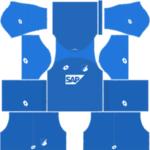 TSG Hoffenheim Kits 2017/2018 Dream League Soccer