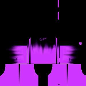 Nike Goalkeeper Away Kit
