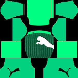 Puma Fourth Kit