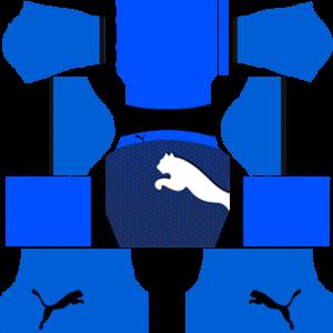 Puma Third Kit