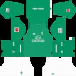 SV Werder Bremen Kits 2019/2020 Dream League Soccer
