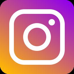 Instagram DLS Logo