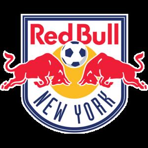 Red Bull Dream League Soccer Logo
