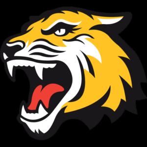Tiger Dream League Soccer Logos