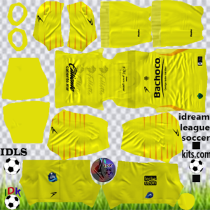 Celaya FC Goalkeeper Home Kit