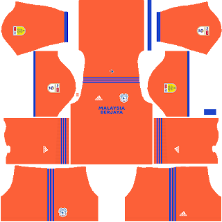 Cardiff City Third Kit