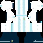 Argentina Copa América DLS Kits 2021