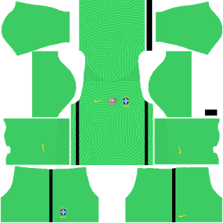 Brazil Copa América 2021 Goalkeeper Away Kit