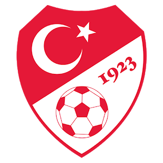 Turkey Euro Cup 2021 Logo