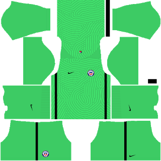 Chile Copa America 2021 Goalkeeper Away Kit