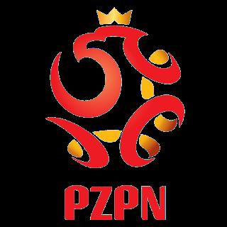 Poland Euro Cup 2021 Logo