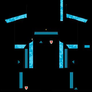 Wales Euro Cup 2021 Goalkeeper Away Kit