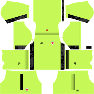 Wales Euro Cup 2021 Goalkeeper Home Kit