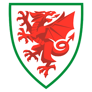 Wales Euro Cup 2021 Logo