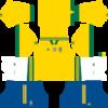 Brazil DLS Fantasy Kit