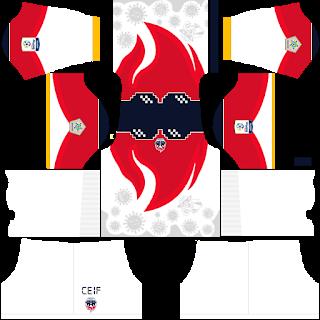 Fortaleza CEIF DLS Kits 2021
