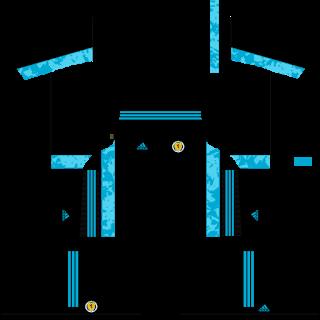Scotland Euro Cup 2021 Goalkeeper Third Kit