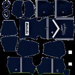 Bordeaux DLS Kits 2021
