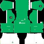 Saint Etienne DLS Kits 2021